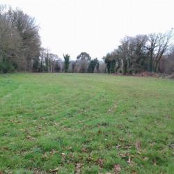 Vente Terrain Le Hinglé 1096 m²