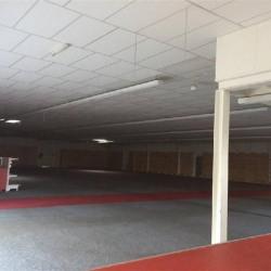 Vente Local commercial Moissac 1350 m²