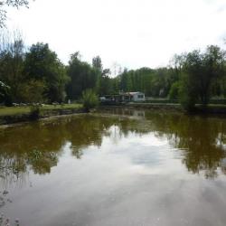Vente Terrain Aubigné-Racan 3000 m²