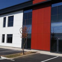 Location Local d'activités Lieusaint 916 m²