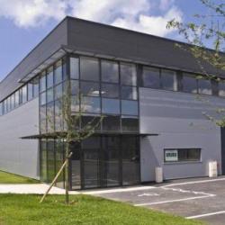 Location Local d'activités Viry-Châtillon 4366 m²