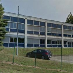 Location Local d'activités Dardilly 782 m²