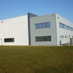 Location Local d'activités Gevrey-Chambertin 3878 m²