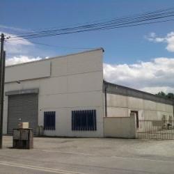 Location Local d'activités Aucamville 1000 m²