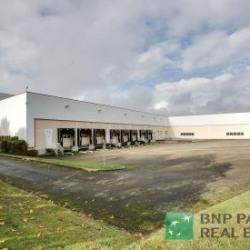 Vente Entrepôt Coignières 11363 m²