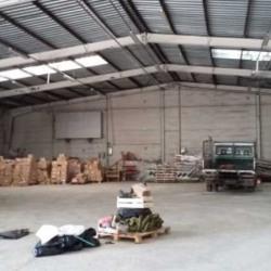 Location Local d'activités Gretz-Armainvilliers 2000 m²