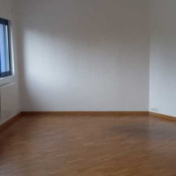 Location Local d'activités Chelles 280 m²