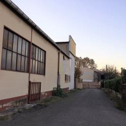 Vente Local d'activités Toulouse (31000)
