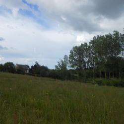 Vente Terrain Dol-de-Bretagne 730 m²