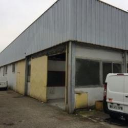 Location Local d'activités Villeurbanne 100 m²