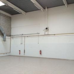 Location Local d'activités Champs-sur-Marne 330 m²