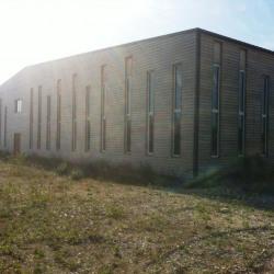 Location Local d'activités Eurre 960 m²
