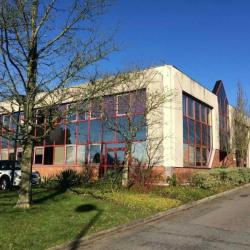 Location Bureau Bois-Guillaume 338,71 m²