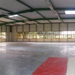 Location Bureau Saint-Thibault-des-Vignes 1051 m²
