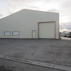 Location Local d'activités Duppigheim 733 m²