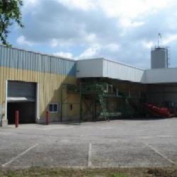 Vente Local d'activités Val-de-Meuse 7800 m²