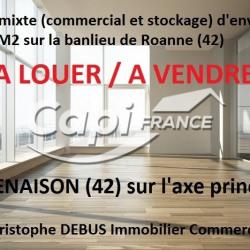 Vente Local commercial Renaison 850 m²