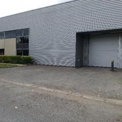 Location Local d'activités Le Mesnil-Amelot 1025 m²