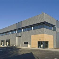 Location Local d'activités Saint-Jean-d'Illac 928 m²