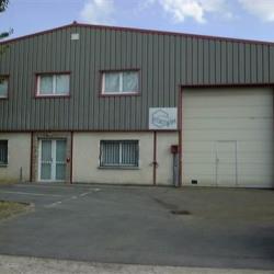 Location Local d'activités Crosne (91560)