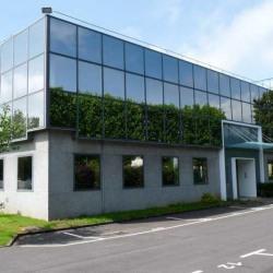 Location Bureau Les Ulis 252,5 m²