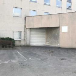 Location Local d'activités Saint-Denis 1603 m²