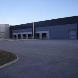 Location Entrepôt Corbas 11519 m²