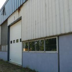 Vente Local d'activités Saint-Éloi 10800 m²