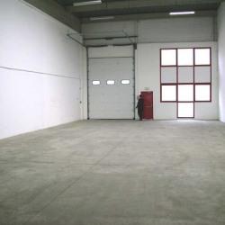 Location Local d'activités Bondy 350 m²