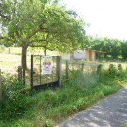 Vente Terrain Saint-Jean-le-Vieux (01640)