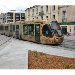 Fonds de commerce Divers Montpellier