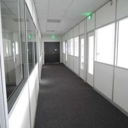 Location Bureau Aubergenville 961 m²