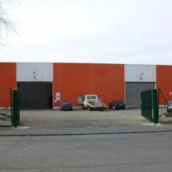 Location Local d'activités Neuville-en-Ferrain 1890 m²