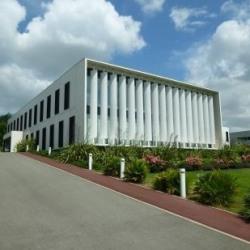 Location Bureau Labège 1081 m²