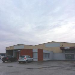Location Local d'activités Arnas 1100 m²