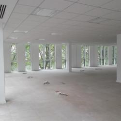 Location Bureau Lyon 9ème 1319 m²