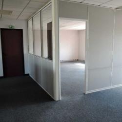 Location Bureau Savigny-le-Temple 235 m²