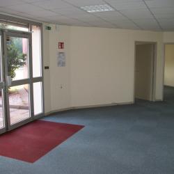 Location Local d'activités Vienne 870 m²
