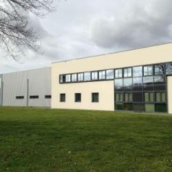 Vente Local d'activités Nantes 1300 m²