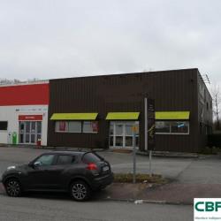 Vente Local d'activités Couzeix 550 m²