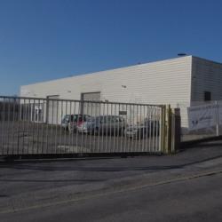 Location Local commercial Muzillac 535 m²