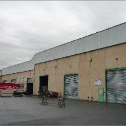 Location Local d'activités Jassans-Riottier 4000 m²