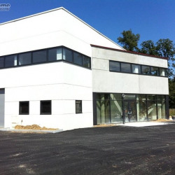 Location Entrepôt Bussy-Saint-Martin 225 m²