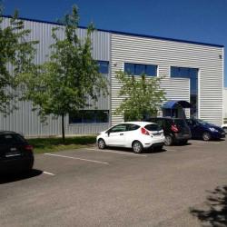 Location Local d'activités Montagny 4712 m²