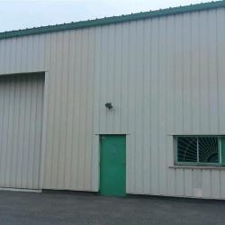 Location Entrepôt Villeneuve-Tolosane 250 m²