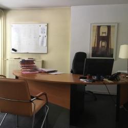 Location Bureau Grenoble 85 m²