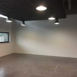 Location Bureau Lyon 2ème 431,3 m²