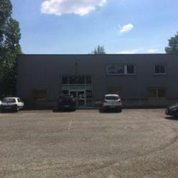 Location Local d'activités Toulouse 500 m²