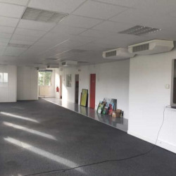 Location Bureau Chatou 200 m²