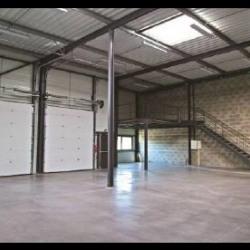 Vente Local d'activités Vourles 2209 m²